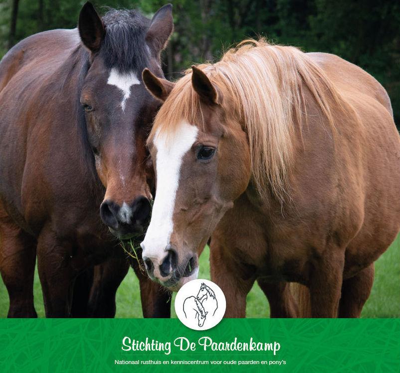 Inzamelpunt voor Stichting de Paardenkamp
